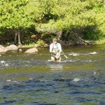 Fly fishing the Wolf River