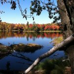 Langlade County Game Lake Fall 1200 x 896