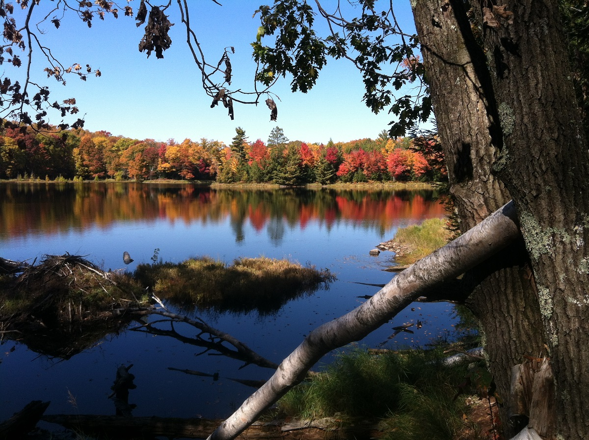 Colors of Langlade County!