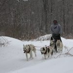 Best Midwest Sled Dog Training Trails