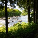Langlade County Wolf River in Summer 1200 x 900