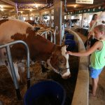 The Central Wisconsin State Fair in Marshfield was in full swing, Saturday, September 5, 20154