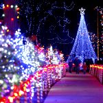 Rotary Winter Wonderland in Marshfield
