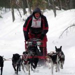 Pine River Dog Sled Race Merrill