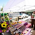 stp-farmers-market-27_0