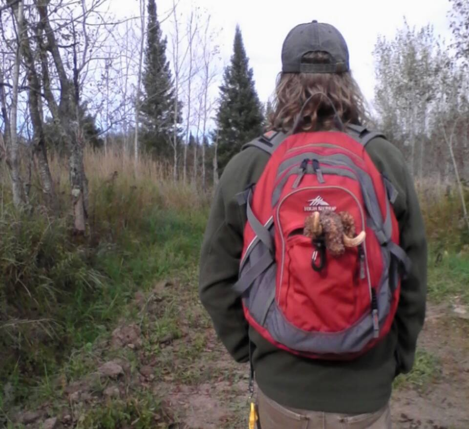 Mamoth on a Hike