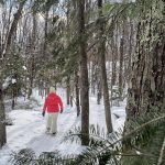 Snowshoeing in Goodman Park