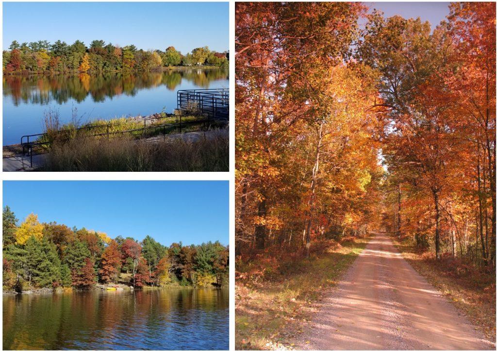 Fall - Wood County WI