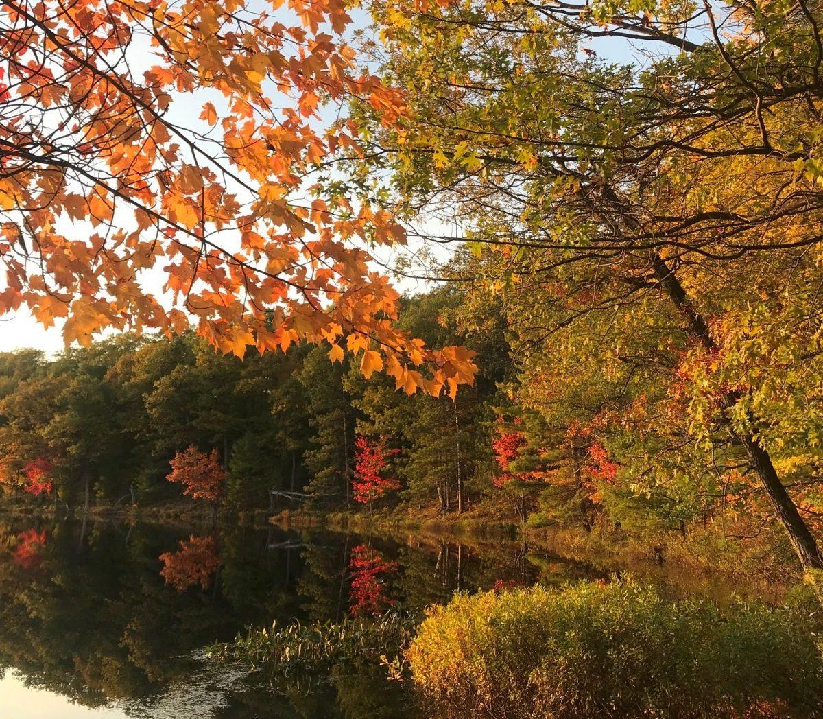 Oneida County - Lake Tomahawk